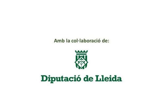 Pla especial de cooperació municipal